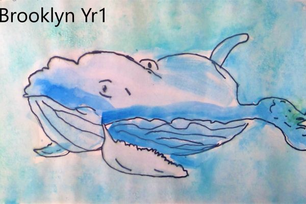 Year-1-Brooklyn-Watercolour-whale