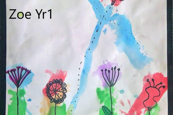 Year-1-Zoe-Splashes-of-Colour-in-the-Garden