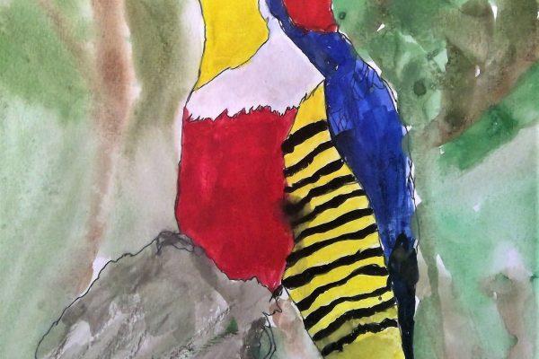 Year-3-4L-Kate-Watercolour-Bird