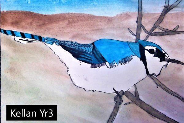 Year-3-Kellan-Watercolour-Bird