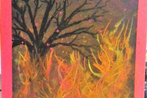 Year-5-Kauri-Bushfire-pastel