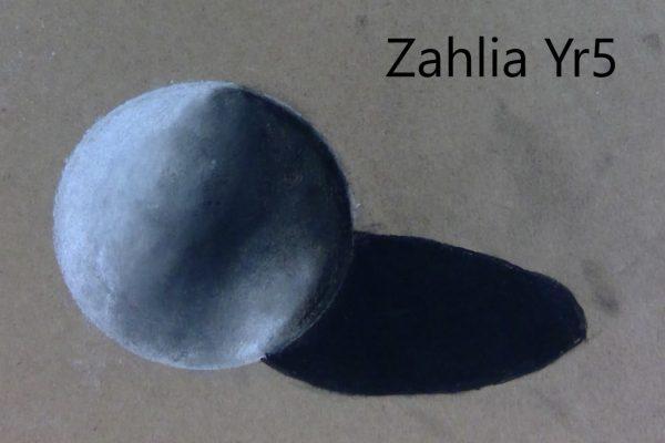 Year-5-Zahlia-3D-charcoal-ball